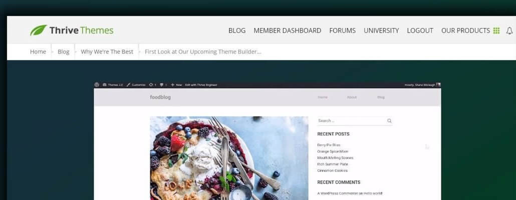 Thrive Engineer Announced by Thrive Themes